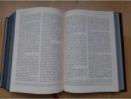 Biblische Spurensuche in Belp    © Regina Müller